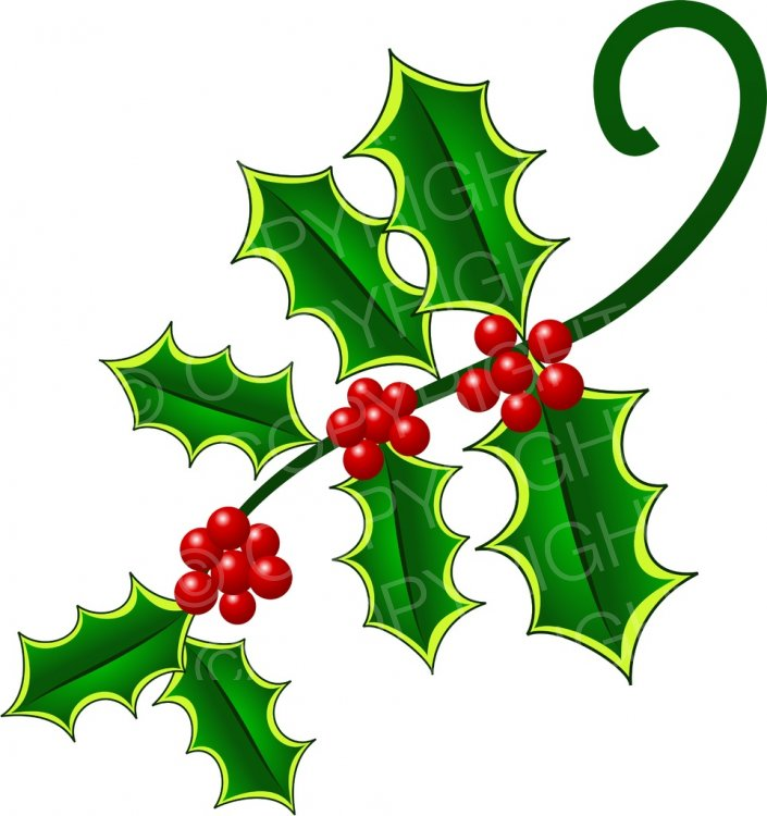 Decoration clipart holly Page Pretty Holly  Clip