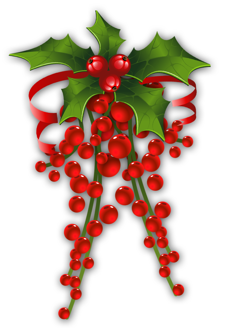Holley clipart christmas things  CHRISTMAS Christmas * HOLLY