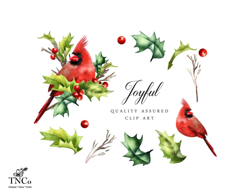 Holley clipart festive Is clipart  Chrsitmas Cardinal