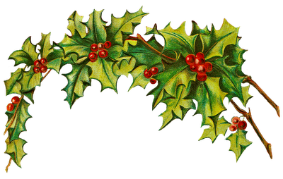 Holley clipart festive Holly Download Clip Free Christmas