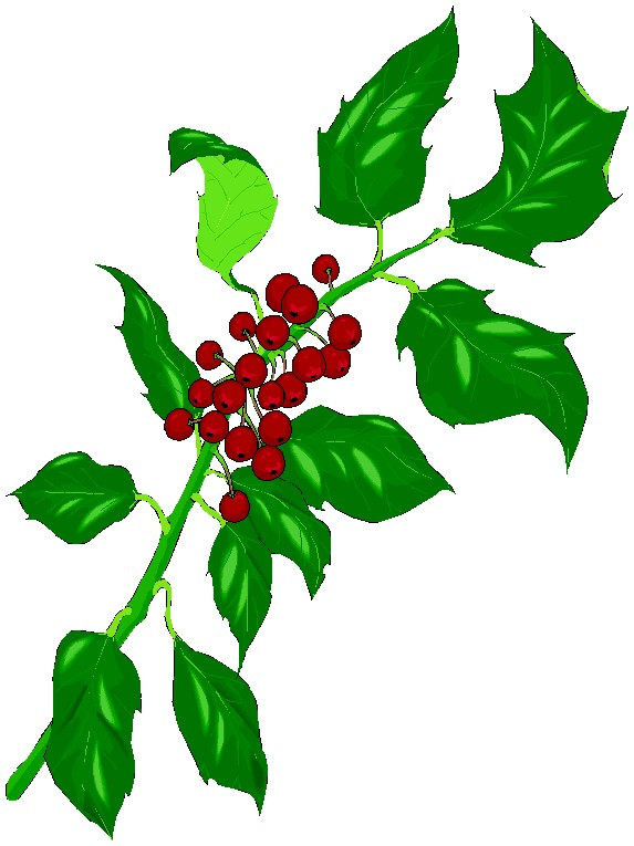 Decoration clipart holly Panda Free Clipart Clipart Decorations