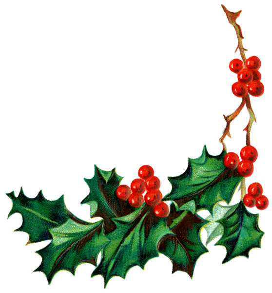 Ivy clipart holly and ivy Free clipart holly com Holly