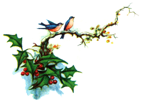 Holley clipart winter 4 holly Cliparting clip clipart