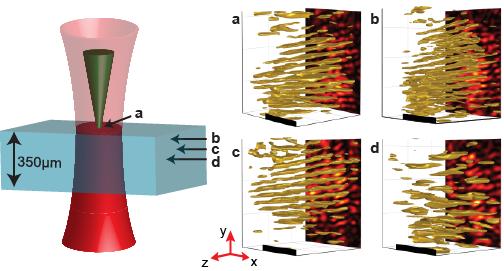 Hologram clipart recording data  holograms: captures biological captures