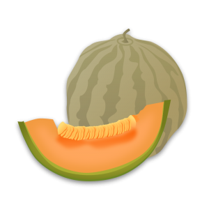 Honeydew clipart Art Honeydew Melon Download Clip
