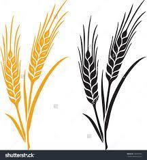 Hop clipart rice stalk Clipart Corn > Image Art