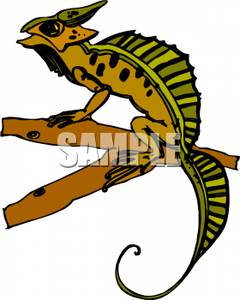 Horned Lizard clipart Picture Royalty horned clipart of