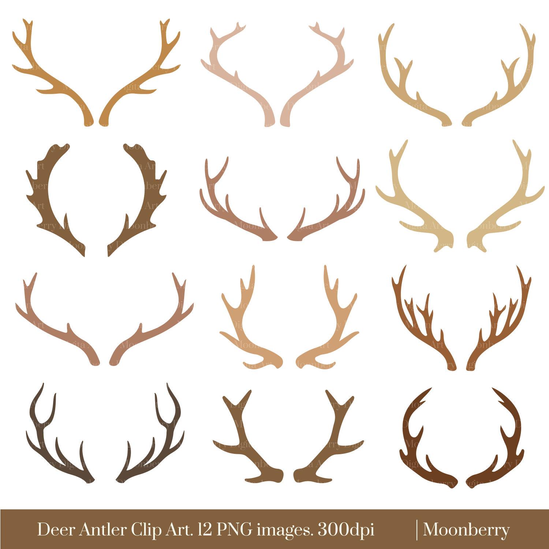 Antler clipart reindeer head #3 Antler Download drawings Antler