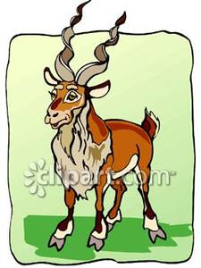Royalty Picture Goat Clipart With