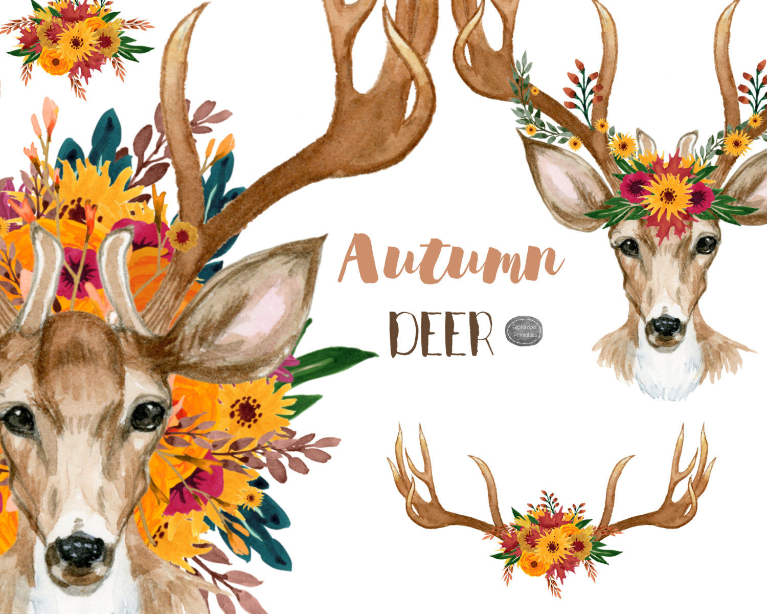 Horns clipart wildlife Flowers Thanksgiving Floral The Clip