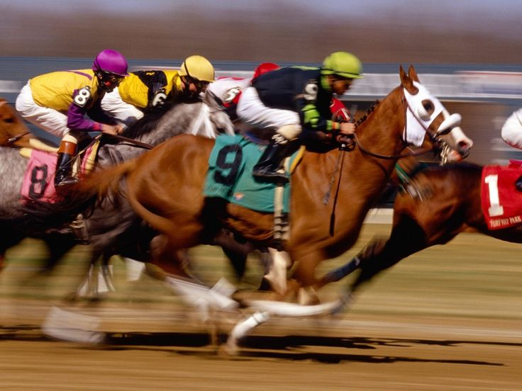 Horse Racing clipart fast animal #6