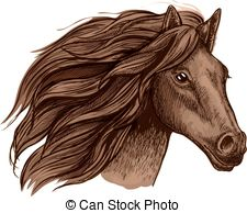Horse Racing clipart wild animal Running Wild equine in Wild