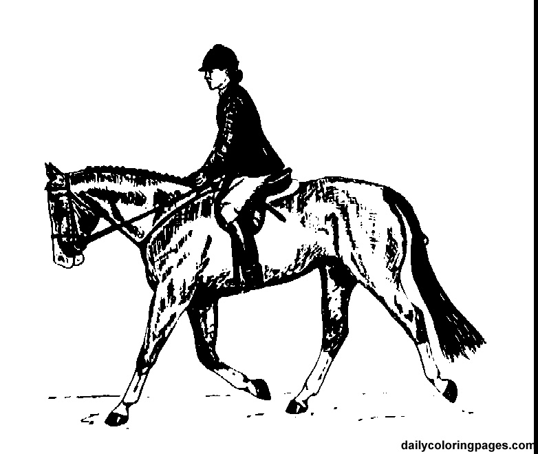 Horse Riding clipart drawing person  IDEAS horse english pages