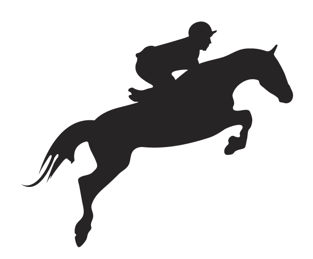 Horse Riding clipart horse jumping One Find Horses this like