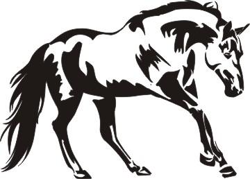 Head clipart quarter horse Quarters Clipart Quarters Horses see