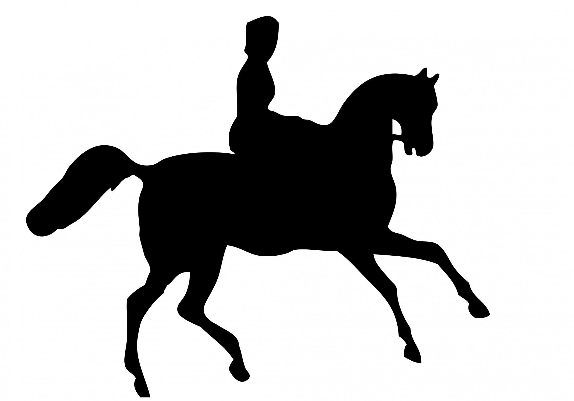 Horse Riding clipart saddle 1 Saddle Saddle Pictures Style