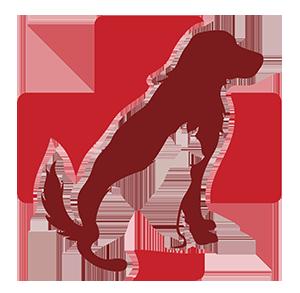 Pet clipart animal hospital Smith Labahn  Fort Veterinarian