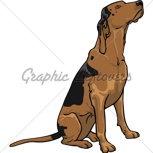 Bloodhound clipart coon dog · Dog Images For Waiting
