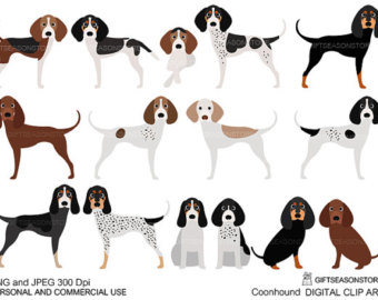 Bloodhound clipart coon dog American clipart coonhound Coonhound collection