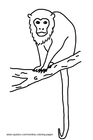 Howler Monkey clipart Quiet howler monkey and Monkey