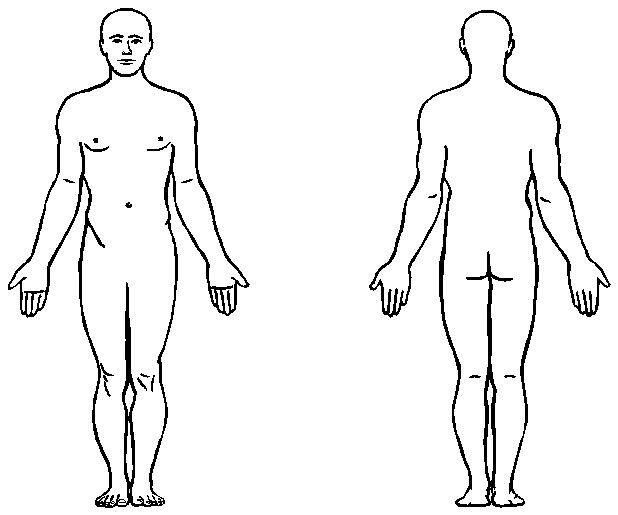 Human clipart body outline 8 Figure Anatomy Body Printable