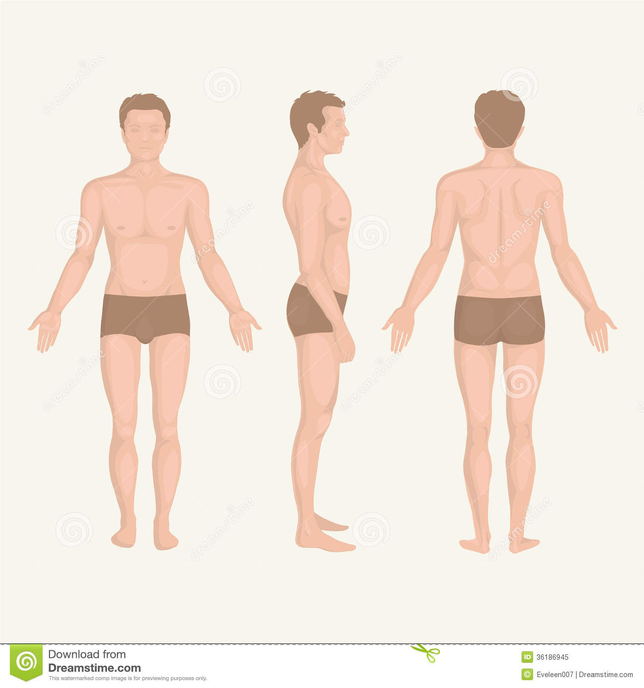Human clipart human standing #12