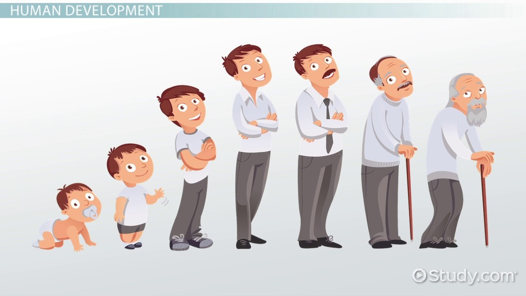 Old clipart late adulthood Transcript  to Adulthood Development