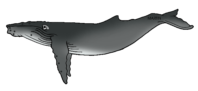 Humpback Whale clipart States by Art  of