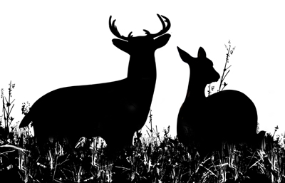 Buck clipart hunting Deer Hunting art clip download