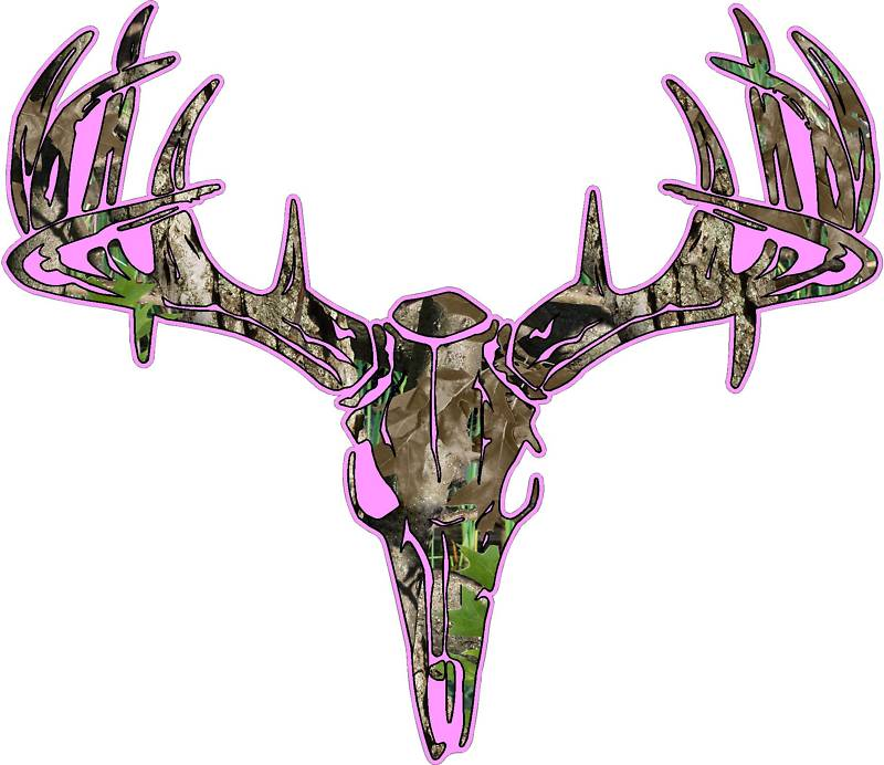 Hunting clipart deer head Animation Drawings Pictures Of Skulls