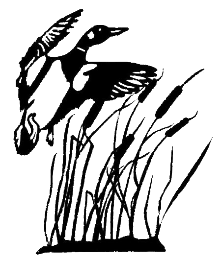 Wood Duck clipart cattails Free Images Duck  Silhouette