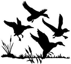 Hunting clipart waterfowl #8
