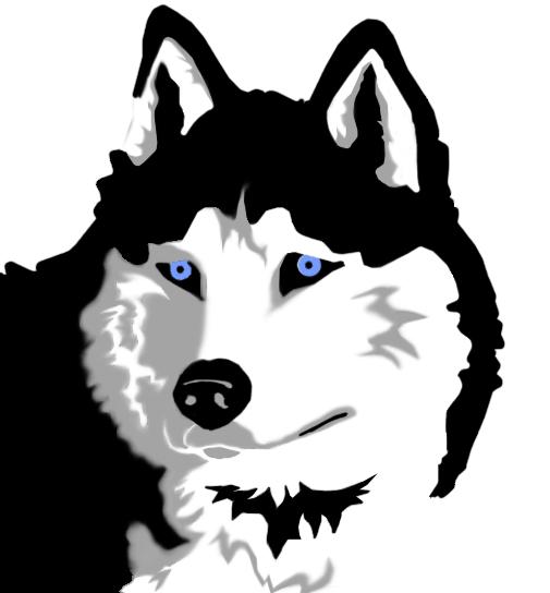 Siberian Husky clipart #15