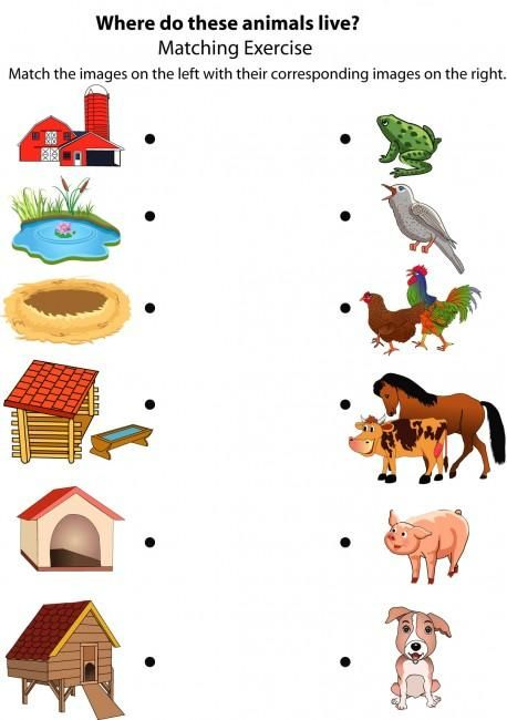 Bird House clipart animal home And Animal 25+ more to