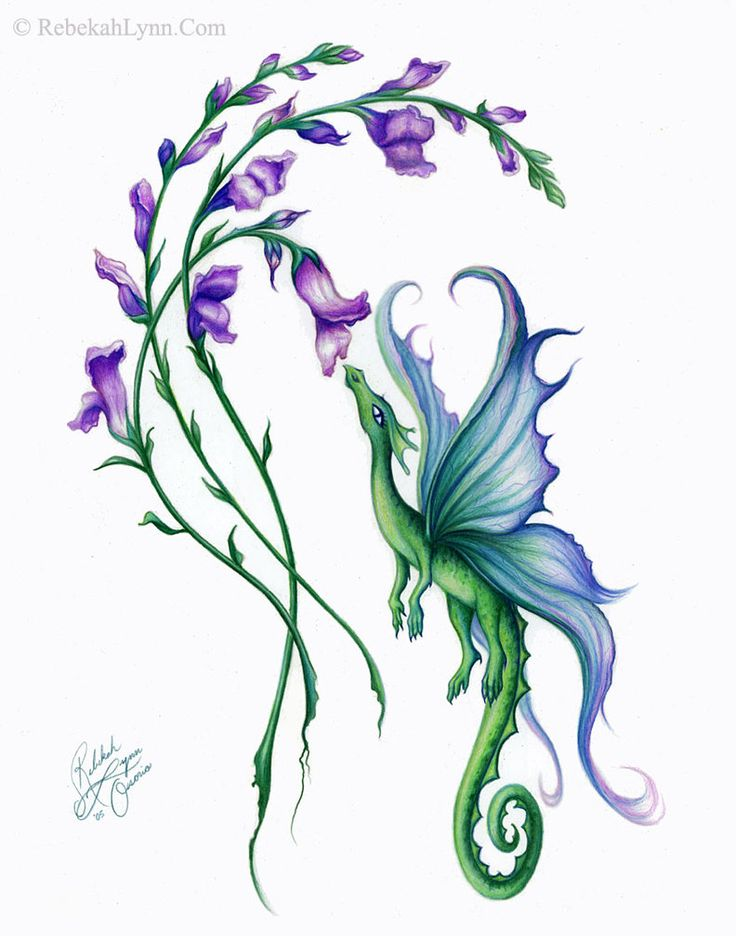 Hyacinth clipart And beautiful which Larkspur is