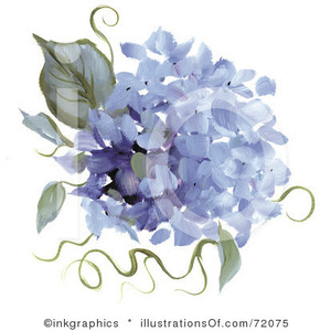 Hydrangea clipart Illustrations Stock & by inkgraphics