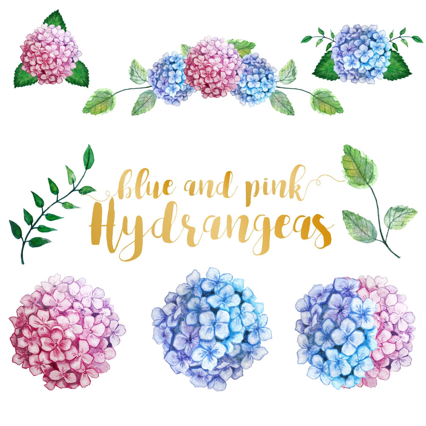 Hydrangea clipart Com TheHungryJPEG Watercolor Watercolor Hydrangea