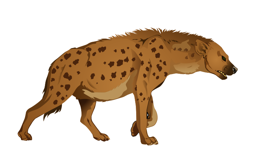 Hyena clipart Clipart Images Free Clipart Panda