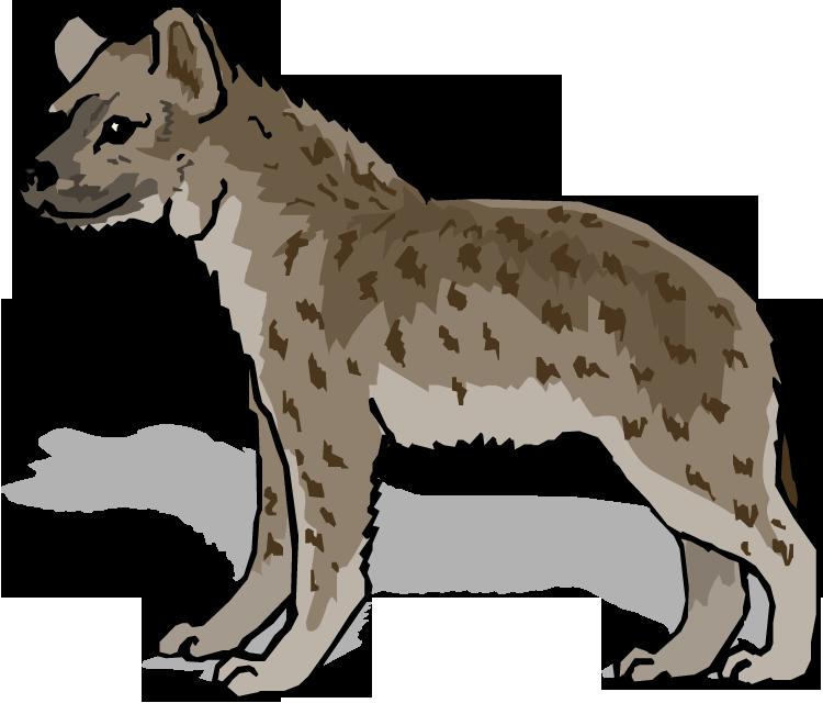 Hyena clipart Clipart Hyena Free