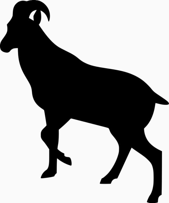 Ibex clipart Hylocrius Nilgiritragus Ibex Download Clipart