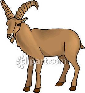 Ibex clipart Art Free Clipart Clip Goat