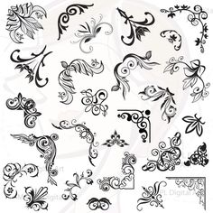 Decoration clipart art file  Corners Flower Digital Vintage
