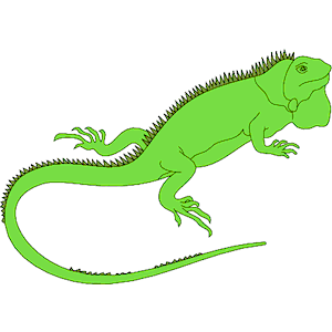Iguana clipart Free download clipart download clip