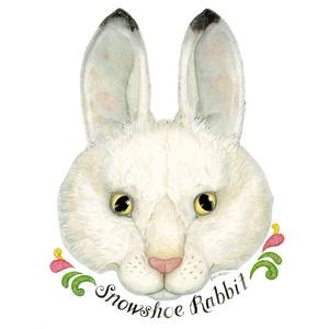 Iiii clipart bunny Rabbit Rabbit Polyvore IIII The