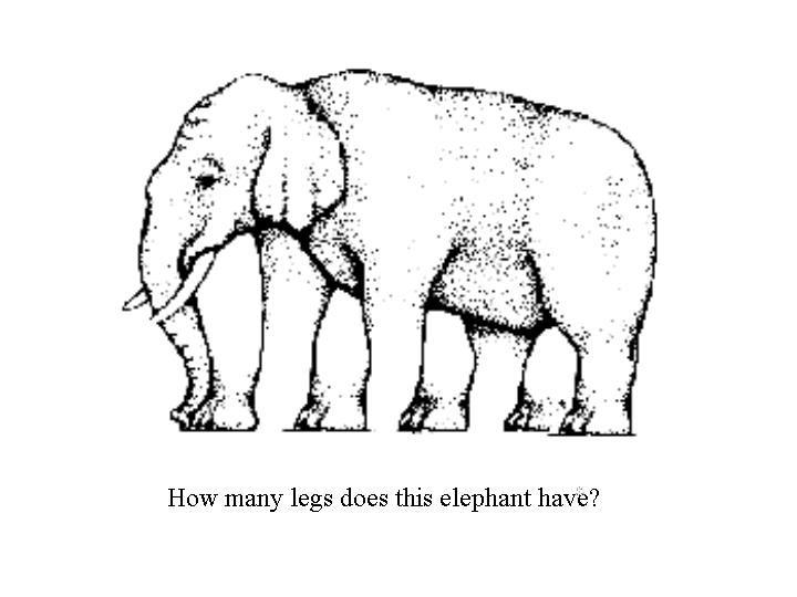 Illusion clipart number Legs Elephant  Game Illusion