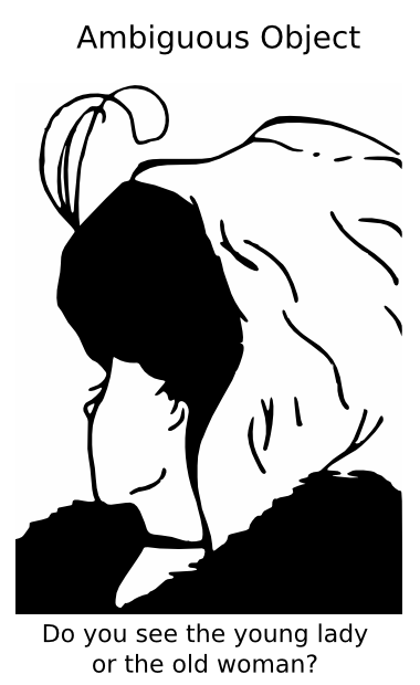 Illusion clipart old lady Lady png woman woman
