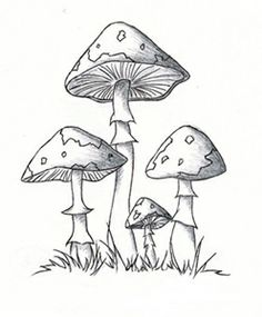 Illustration clipart black and white Art clip mushroom  vintage