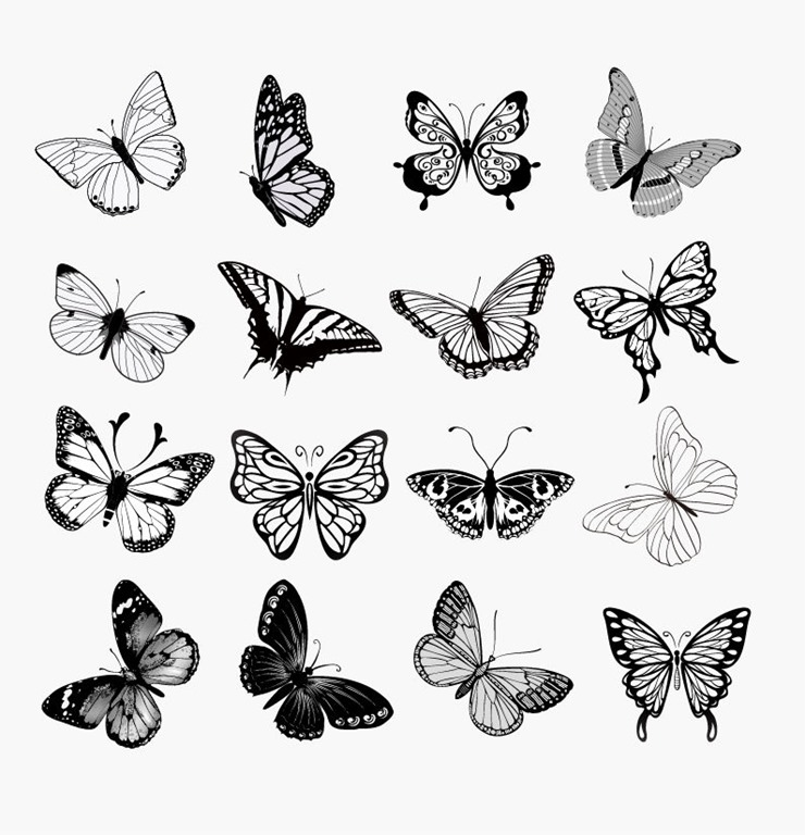 Illustration clipart butterfly silhouette Vector Butterflies of Free Vector