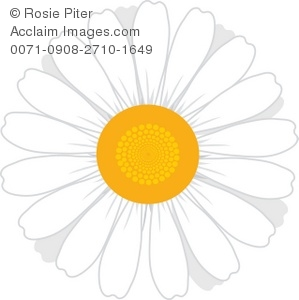 Illustration clipart daisy Of A Of Flower Clip