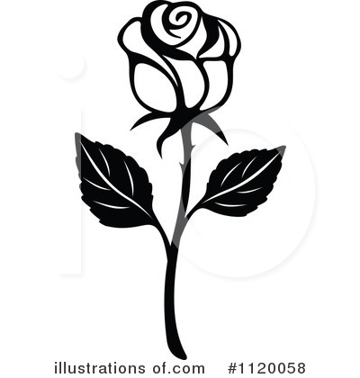 White Rose clipart illustration #1